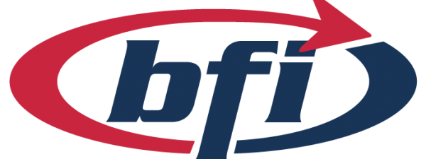 BFI IT Trainer